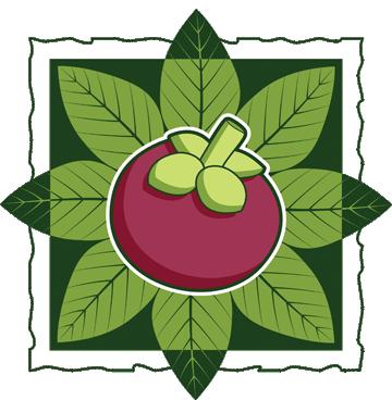 Mangosteen_logo12